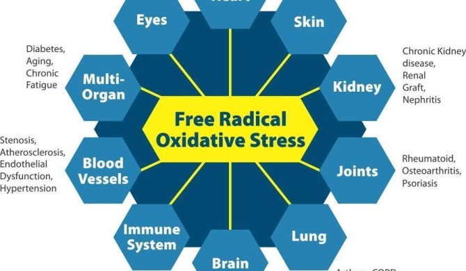 Oxidation – Do You Want to Age Quickly?